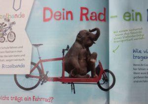 Aus ADFC-Mitgliedermagazins Radwelt 1/2016: Elefantenbaby auf Bullitt